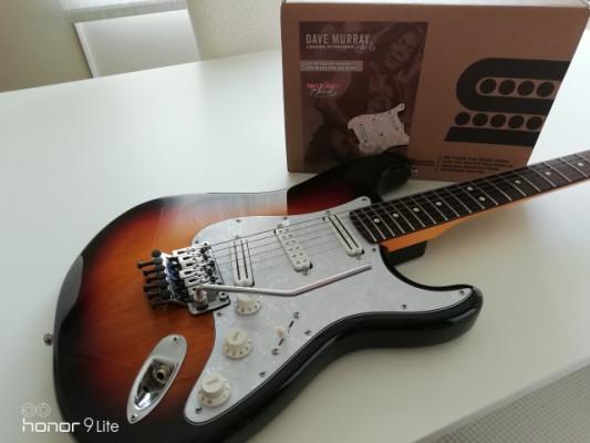 Fender Stratocaster FR Deluxe USA DAVE MURRAY