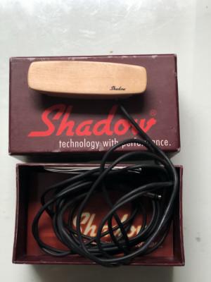 Pastilla shadow