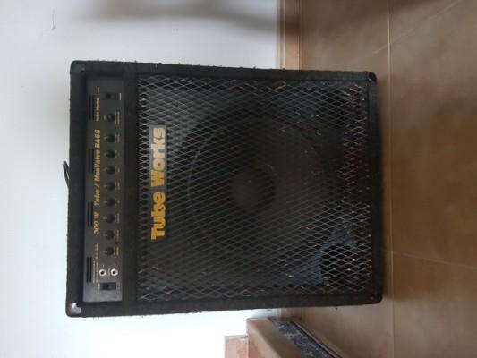 Tube Works (BK Buttler) 300 W Tube / Mosvalve Bass