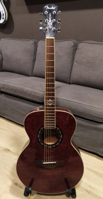 (RESERVADA) Fender T-Bucket 200