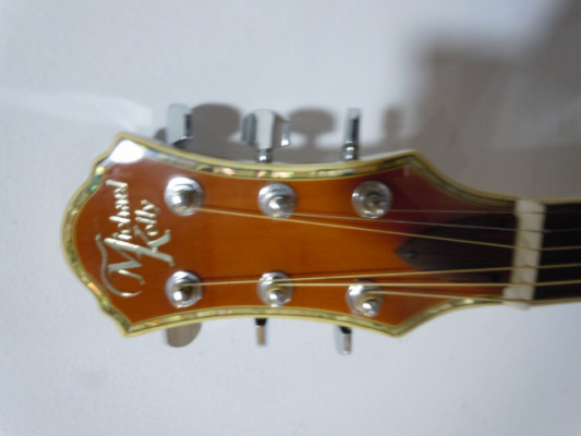 ACUSTICA MICHAEL KELLY VISIONARY 15CE