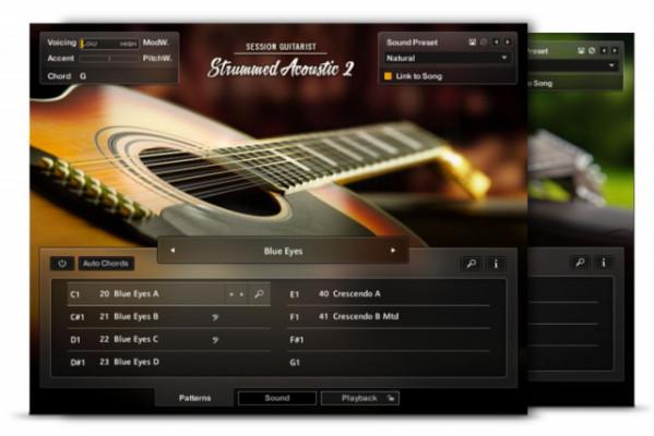 NI Strummed Acoustic 2 (licencia)