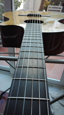 TAYLOR NS54 CE