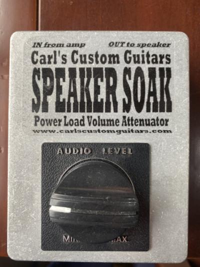 Carls custom speaker soak