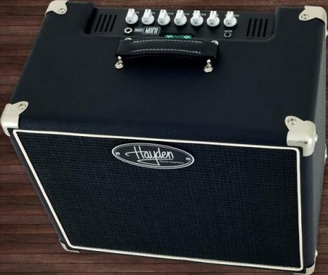 Amplificador Hayden MoFo 5W valvular