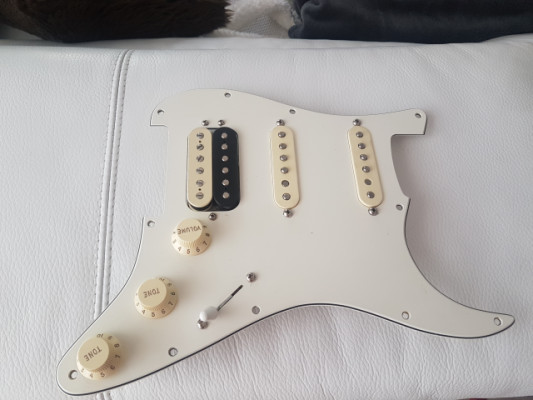 Pickguard Fender Shawbucker Usa.