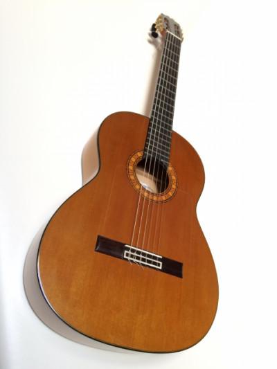 Jesús de Jiménez Guitarra Flamenca