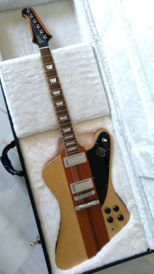 Gibson Firebird V Maple Wings