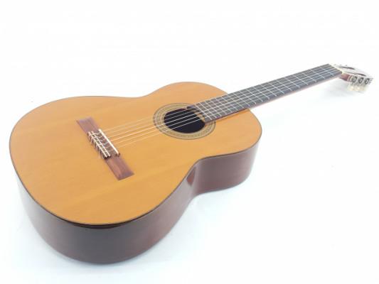 Guitarra clásica Raimundo