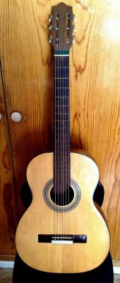 Guitarra española con funda, para principiante.