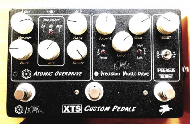 XTS Preamp, Pedaltrain, Slide. (CAMBIOS)