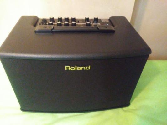 ROLAND AC 40