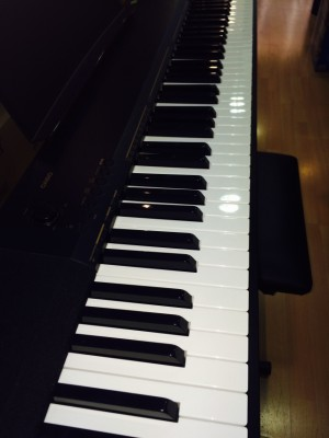 PIANO CASIO CDP 130