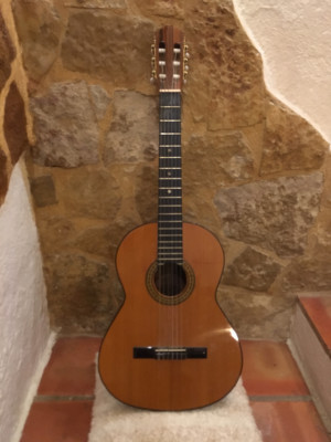 guitarra casica sin marca