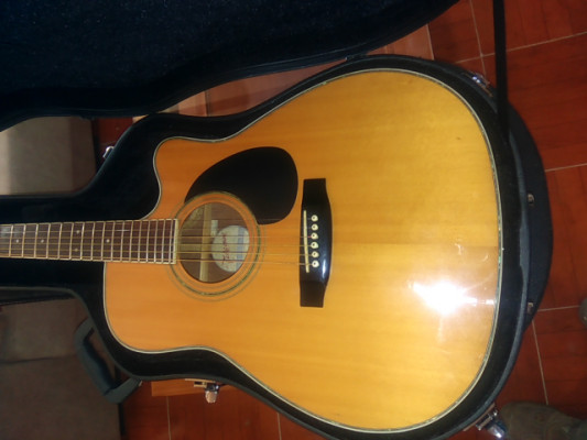 Takamine EG-334C Acoustic/Electric with original hard case