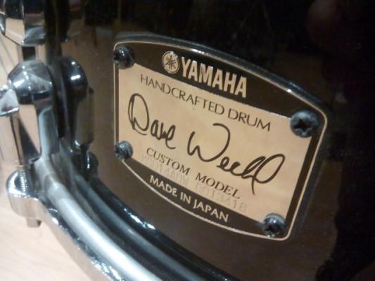 """CAJA YAMAHA MSD-14ADW 14"""" x 5""""  Dave Weckl Signature"""