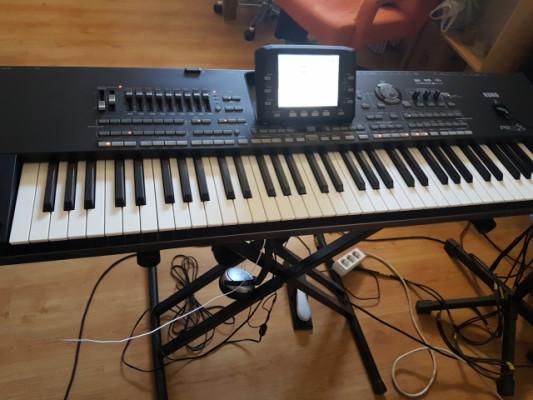 KORG PA3X-76 teclas profesional arranger