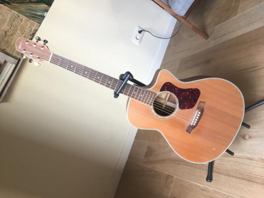 Guitarra acústica Walden G630 CE
