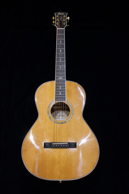 Cort Gold P8 Parlor