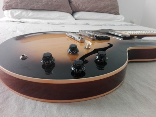 REGALADA Gibson ES 335 DOT