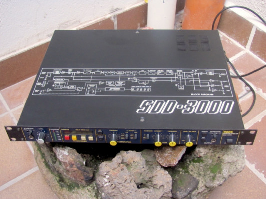 "Korg SDD-3000, ""the Edge's delay"" impecable"