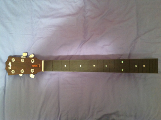 TAYLOR - Màstil TAYLOR Original para guitarra acústica