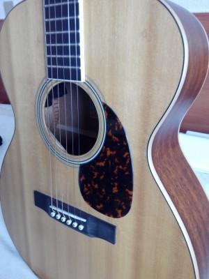 Larrivée OM-03E por Gibson Hummingbird o Fender Telecaster