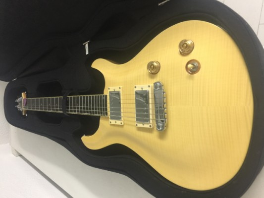 Guitarra Electrica Marca Indie