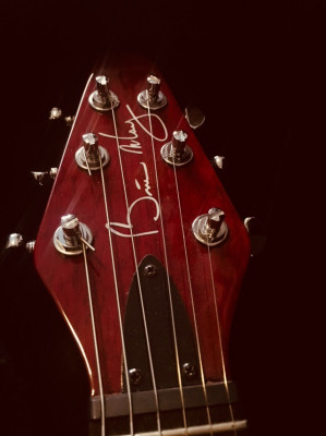 Guitarra Brian May Red Special