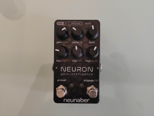 Neunaber Neuron preamp/speaker sim