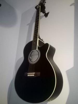 Guitarra electroacustica Eastwood