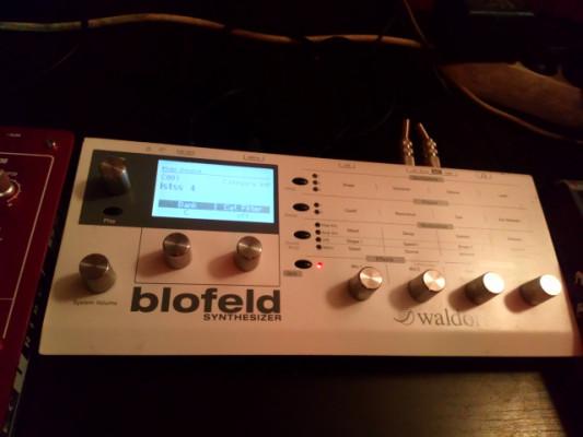 Blofelt waldorf