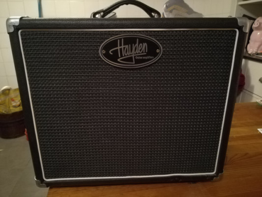 : amplificador todo a valvulas HAYDEN 5 w