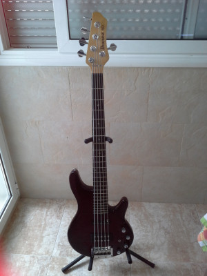 Cambio bajo 5 cuerdas por guitarra