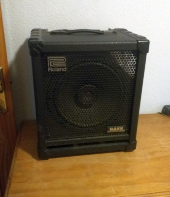 Roland Bass Cube 100W