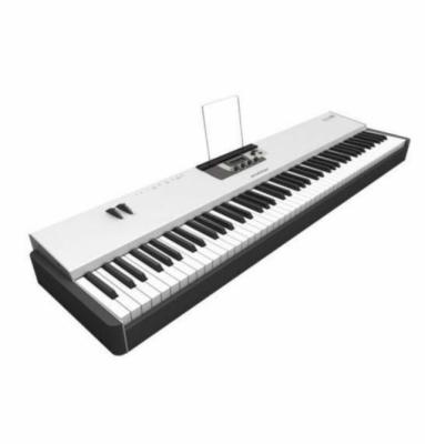 Teclado controlador MIDI Studiologic Acuna 88