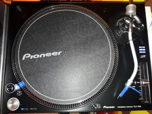 pioneer plx1000 plx 1000