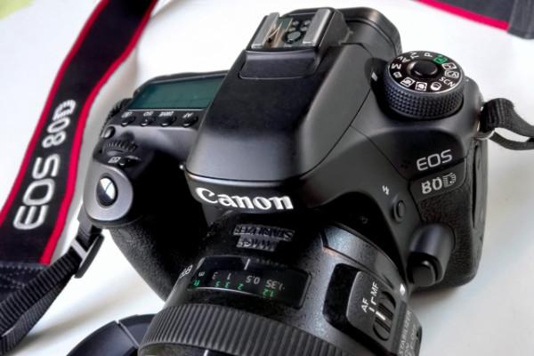 EQUIPO FOTO: CANON EOS 80D + Canon EF-S 17-55 mm ... O cambio por guitarra