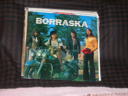 Rock & Roll-Borraska