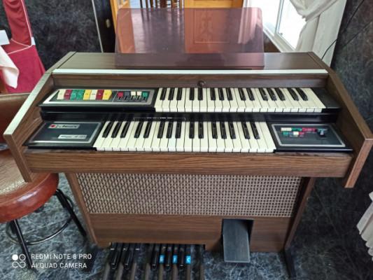 organo Jen - con mueble de dos teclados.