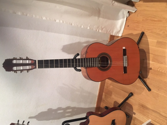 Vendo Guitarra Bossa nova 2 Raimundo nueva