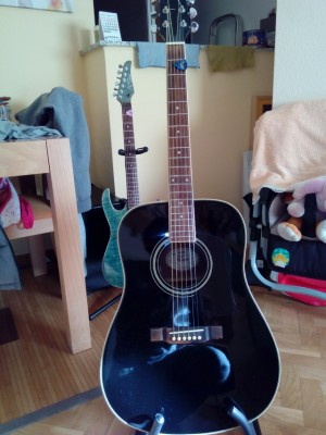 Guitarra acustica Washburn