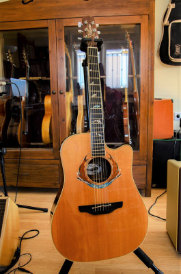 """Takamine 2002 LTD """"Whales"""". Made in Japan."""