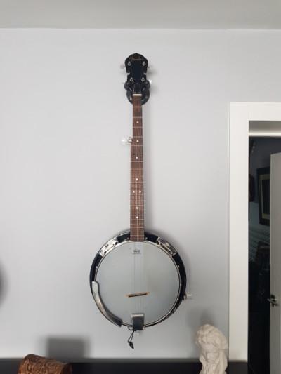 Banjo fender fb300