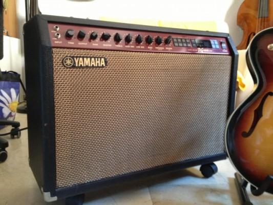 Amplificador YAMAHA DG100 - 212