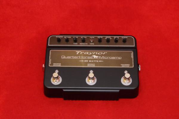 Traynor QuarterHorse 25 Watt Microamp