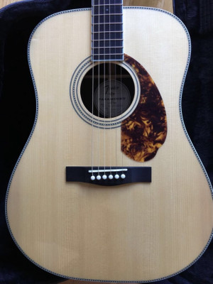 Fender PM-1 Limited Adirondack