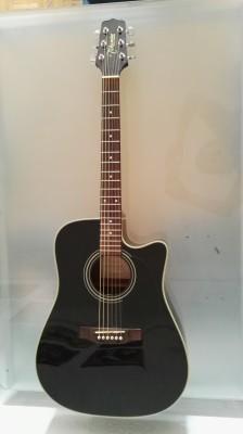 Guitarra Acústica Takamine EG531C