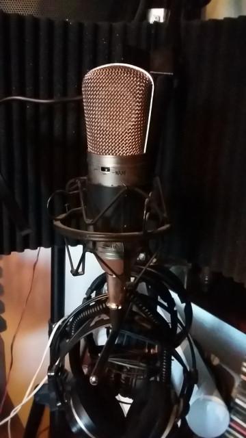 Microfono de estudio Berhinger B-1