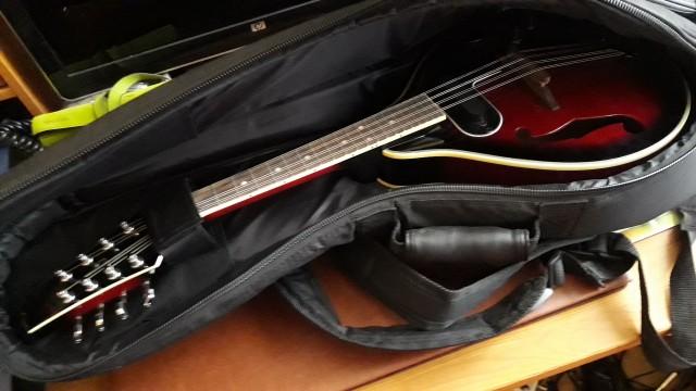 O cambio Mandolina Johnny guitars electrificada